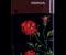 «Розы» — аэрография телефона Nokia, 2008г