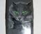 «Кот» — аэрография телефона Samsung, 2008г.