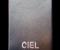 Инкрустация кристаллами Swarovski визитницы Ciel, 2008г.